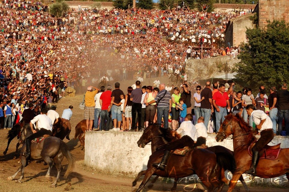 S'Ardia, reckless horse race in Sedilo